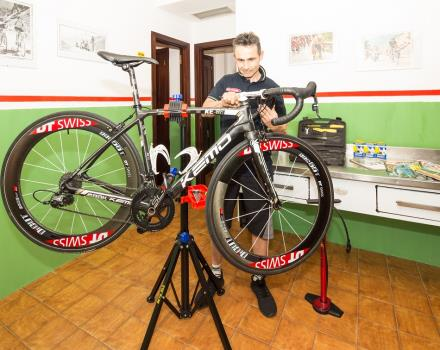 Choose your mountain bike to the Hotel Regina Elena!